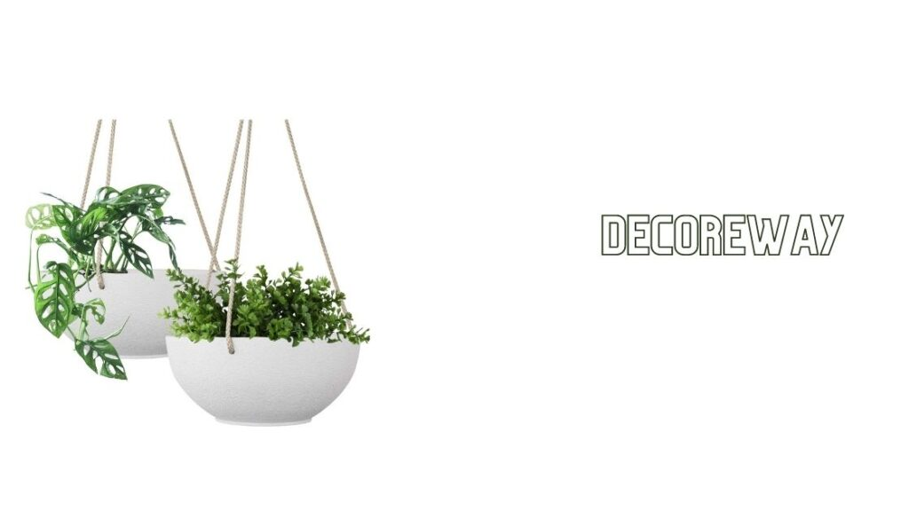 Outdoor Hanging Baskets With Flowers