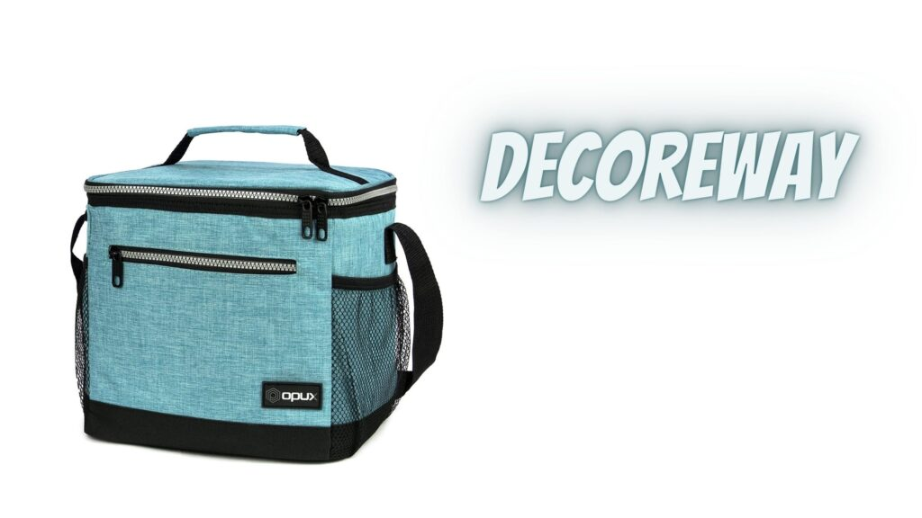 Best Insulated Lunch Bag For Work